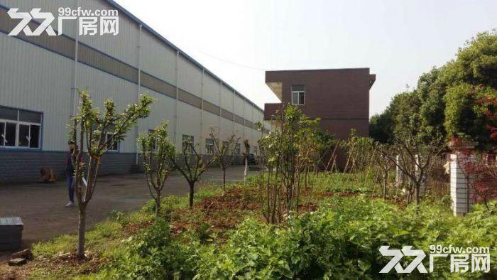 出售!常福23亩11000平米独门独院钢构厂房位置优越-图(5)