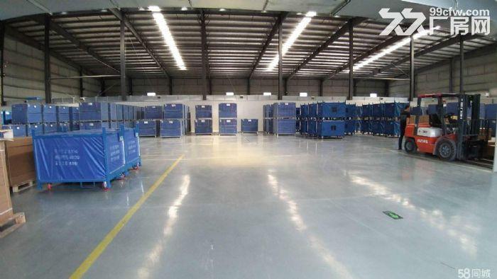 沌口开发区格力电器旁一楼单层厂房2万方出租可小面积分租-图(4)