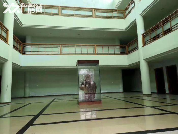 惠州市惠东《红本》6万平方钢结构厂房出租可分租有环评-图(2)