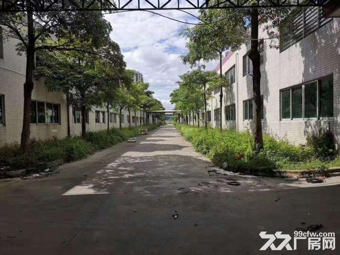 惠州市惠东《红本》6万平方钢结构厂房出租可分租有环评-图(4)