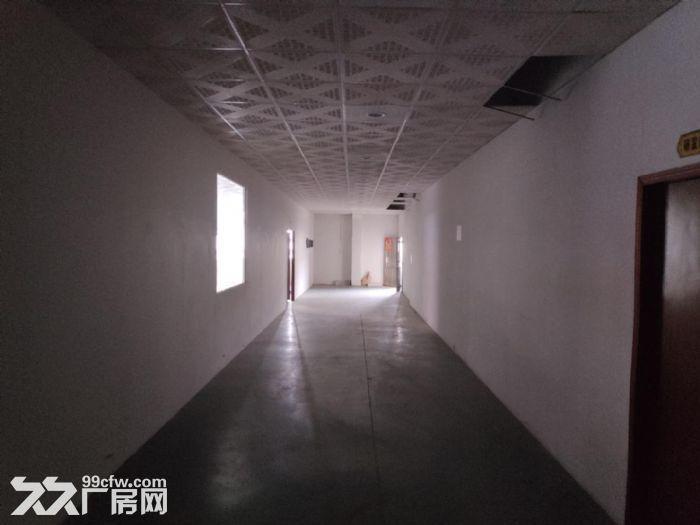 江海高新工业区单一层厂房1850方出租电按需有办公室可分租-图(1)