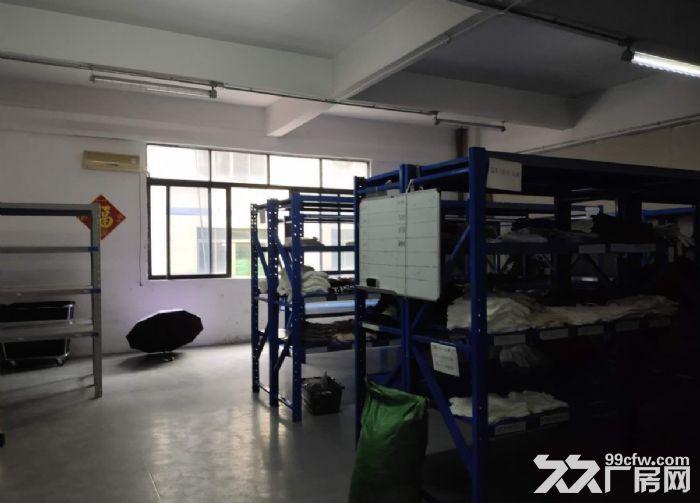 精装修,无转让费,同益工业区标准770方厂房出租-图(5)