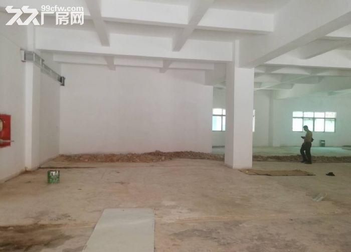 永宁工业区附近一楼标准500方仓库厂房出租-图(2)