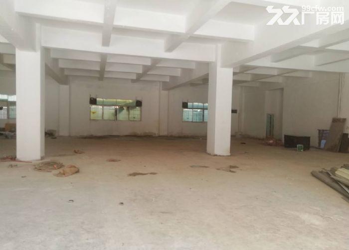 永宁工业区附近一楼标准500方仓库厂房出租-图(3)