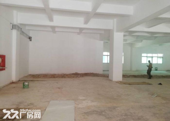 永宁工业区附近一楼标准500方仓库厂房出租-图(4)