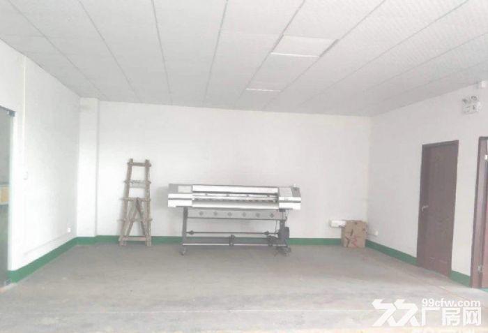 濠头附近首层原房东标准600方仓库厂房,水电齐全-图(4)