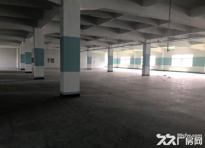 古三工业区区附近楼上标准1500方厂房,可分租-图(1)