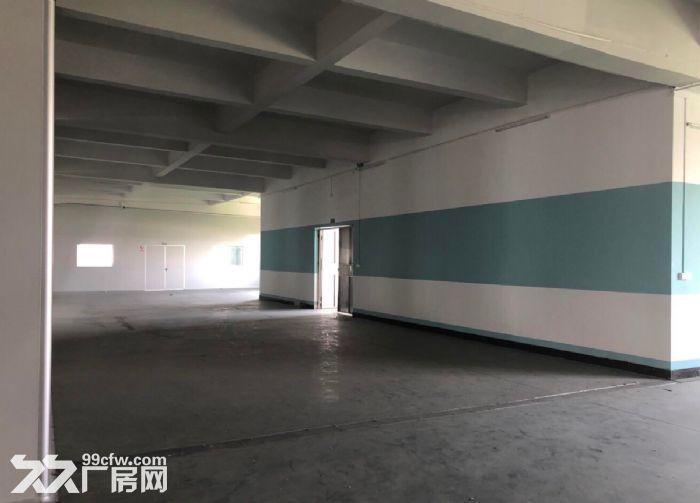古三工业区区附近楼上标准1500方厂房,可分租-图(3)