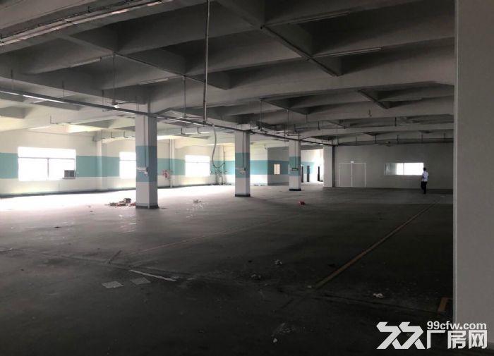 古三工业区区附近楼上标准1500方厂房,可分租-图(4)