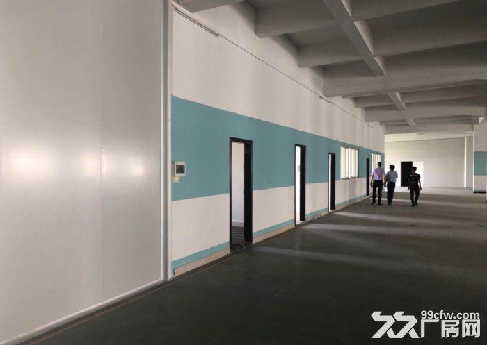 古三工业区区附近楼上标准1500方厂房,可分租-图(5)