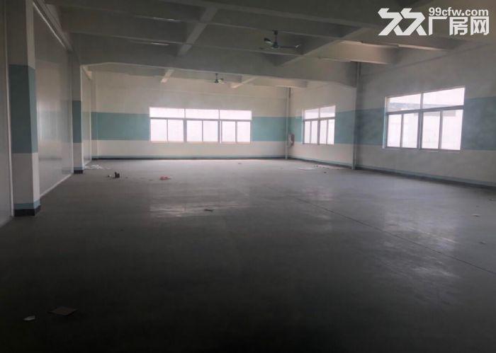古三工业区区附近楼上标准1500方厂房,可分租-图(6)