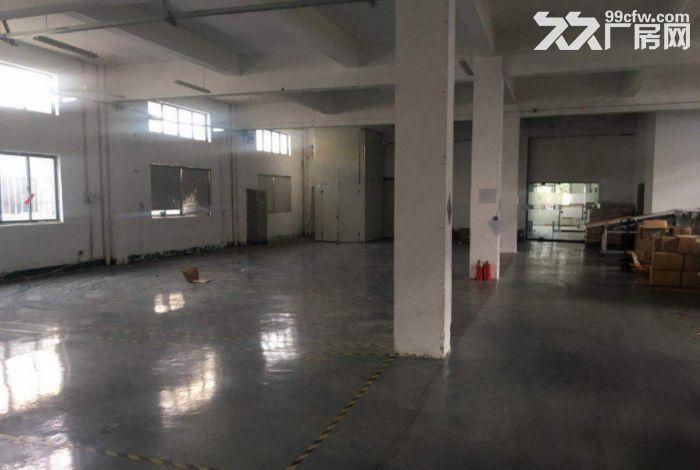 濠头附近一楼600方厂房仓库出租租金便宜-图(2)