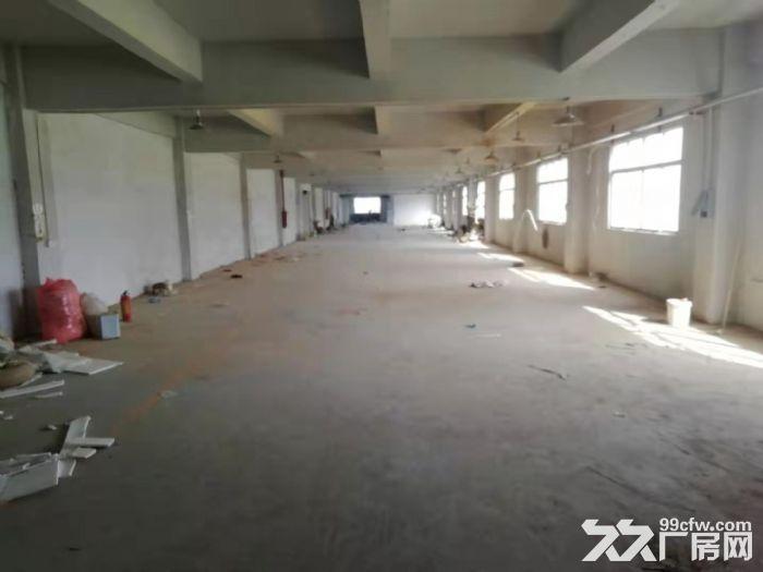 好招工凤岗浸校塘楼上900平方现成水电厂房出租有电梯-图(2)