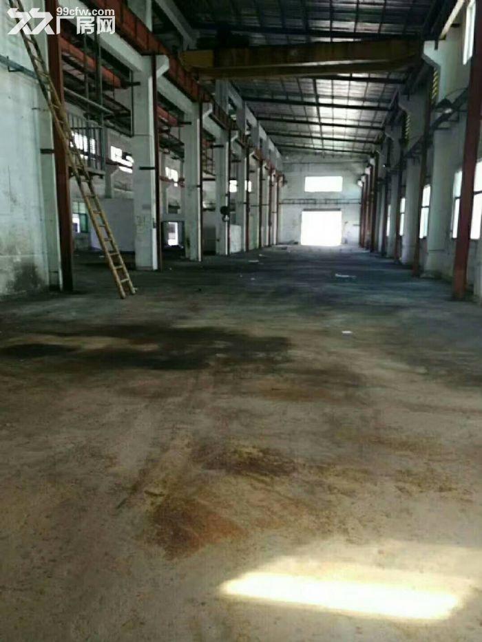 凤岗沙岭车站宏盈工业区附近单层钢构厂房1600平出租9米高-图(2)