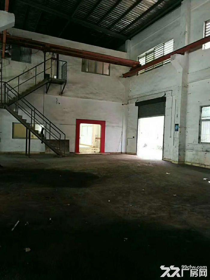 凤岗沙岭车站宏盈工业区附近单层钢构厂房1600平出租9米高-图(3)