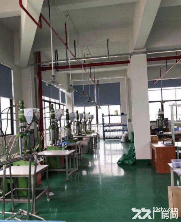 古镇同益工业区二楼原房东带红本800方厂房-图(2)