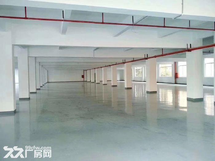 凤岗独院厂房出租12500平可分适合酒店电商贸易合同期长-图(2)