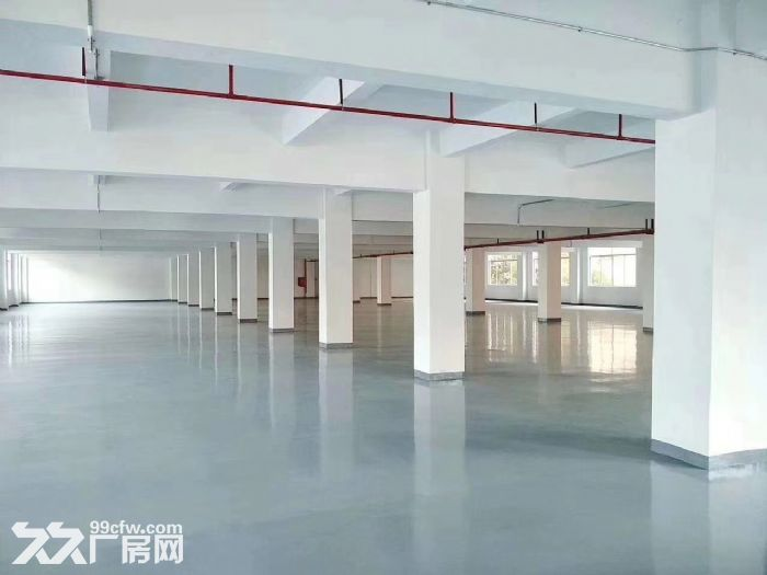 凤岗独院厂房出租12500平可分适合酒店电商贸易合同期长-图(3)