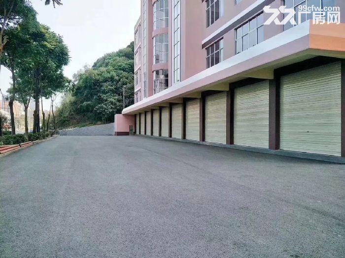 凤岗独院厂房出租12500平可分适合酒店电商贸易合同期长-图(4)
