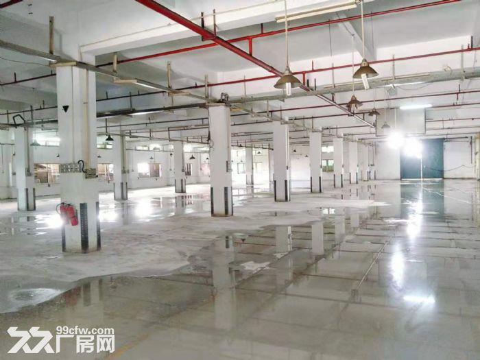 凤岗雁田工业区原房东无公摊厂房出租一楼4000平方现成水电齐全-图(2)