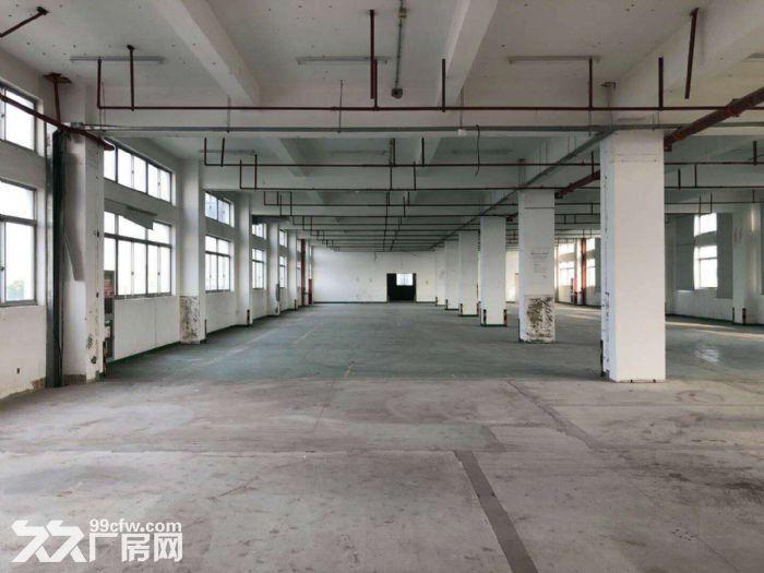 金桥中环近地铁一楼6米2550平研发展示检测半导体-图(1)
