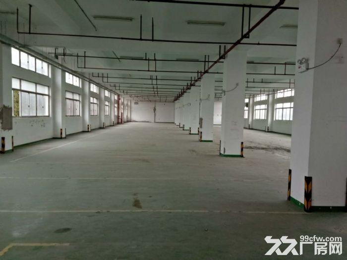 金桥中环近地铁一楼6米2550平研发展示检测半导体-图(3)