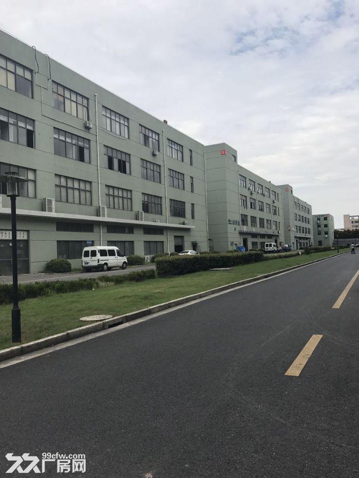 松江厂房出租−松江新桥电子科园新推出大平层厂房1350平可生产环评,价格优惠-图(3)