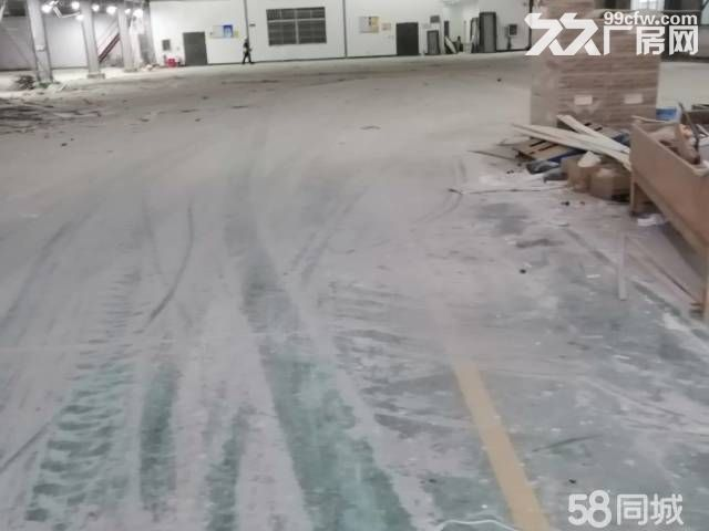新桥新出3000平原房东厂房有行车-图(3)