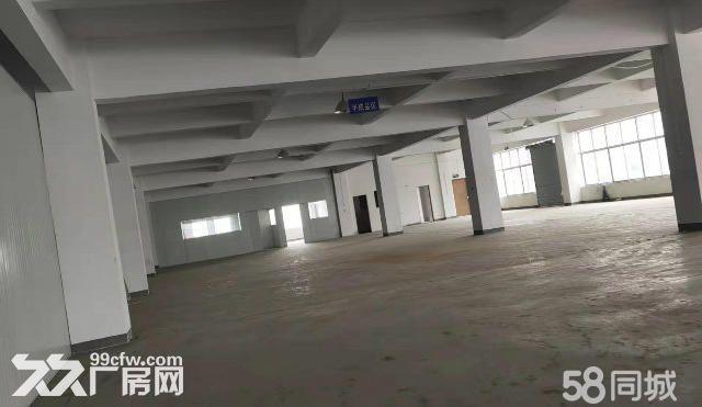 茸北出租独门独院双层厂厂房可做仓库-图(1)