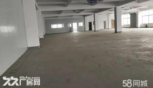 茸北出租独门独院双层厂厂房可做仓库-图(3)