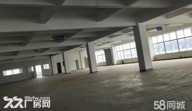 茸北出租独门独院双层厂厂房可做仓库-图(2)