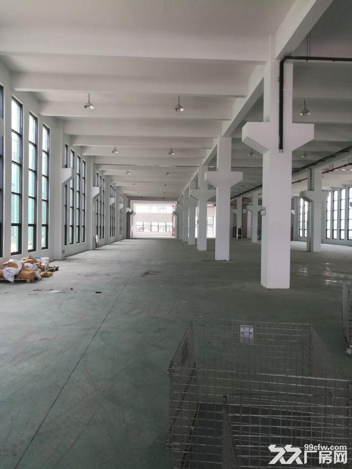 新区独栋双层厂房3800平出租-图(2)