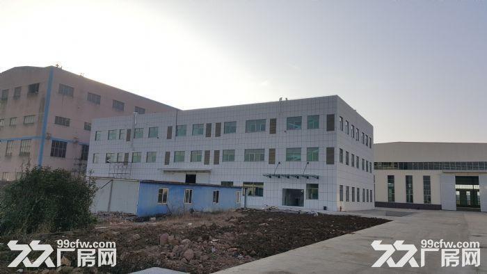紧邻南京10公里省级开发区厂房便宜出租可分割-图(5)