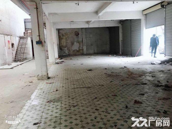 小榄3000方单层厂房出租,租金便宜-图(3)