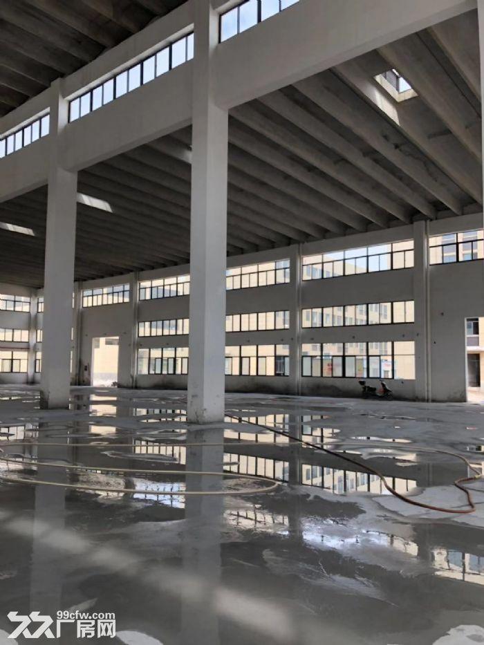 厂房众多台州市内都有欢迎热线-图(4)