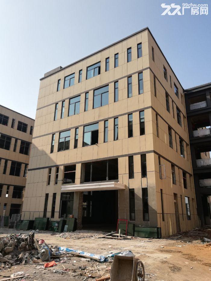 麓谷内300−3000平方开发商出售出租,门口就是肯德基-图(1)