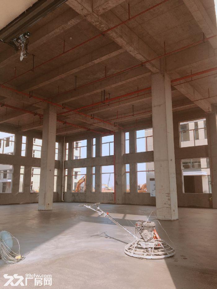 麓谷内300−3000平方开发商出售出租,门口就是肯德基-图(5)