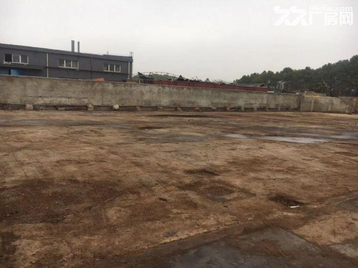 刘行宝安公路靠近s7有独门独院6亩水泥地出租-图(1)