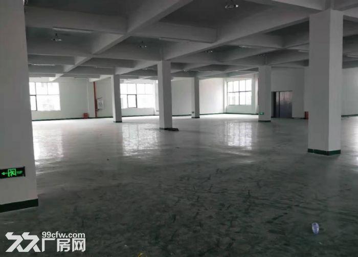五沙工业区标准二楼有电梯650方厂房出租,-图(1)