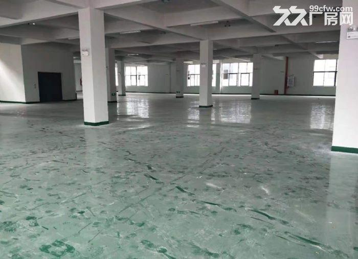 五沙工业区标准二楼有电梯650方厂房出租,-图(2)