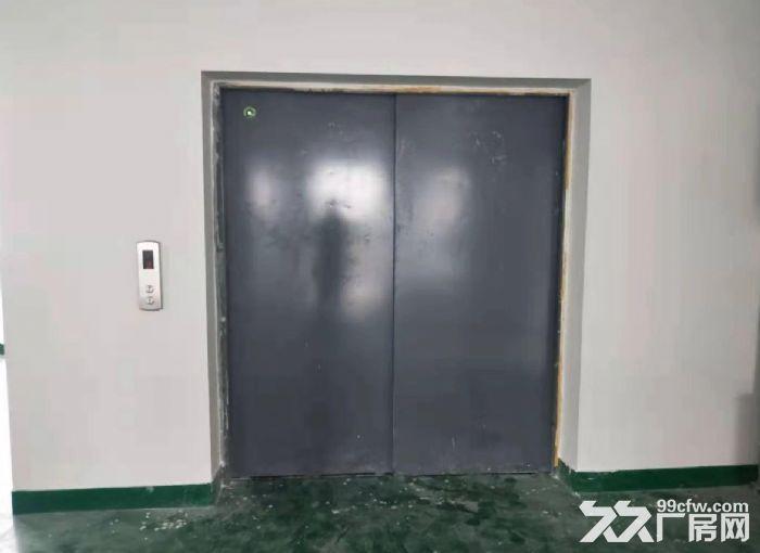 五沙工业区标准二楼有电梯650方厂房出租,-图(4)