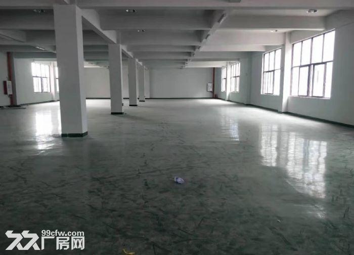 五沙工业区标准二楼有电梯650方厂房出租,-图(5)