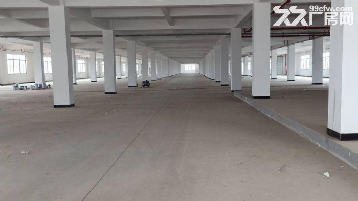 永宁工业区一楼标准700平,可环评-图(2)