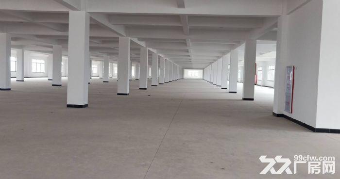 永宁工业区一楼标准700平,可环评-图(3)