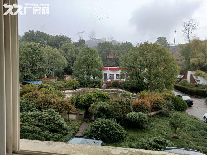 出租宜昌点军区紫阳路厂房土地13700平方建筑面积5930平方施齐全-图(4)
