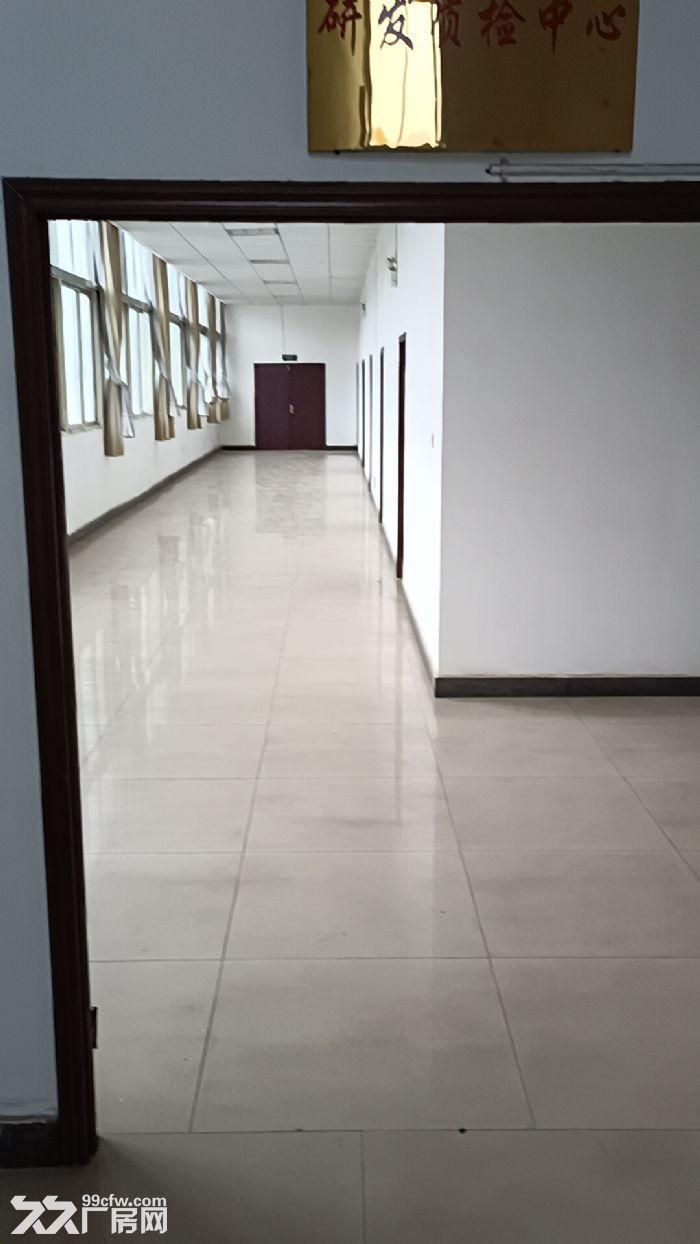 出租宜昌点军区紫阳路厂房土地13700平方建筑面积5930平方施齐全-图(8)