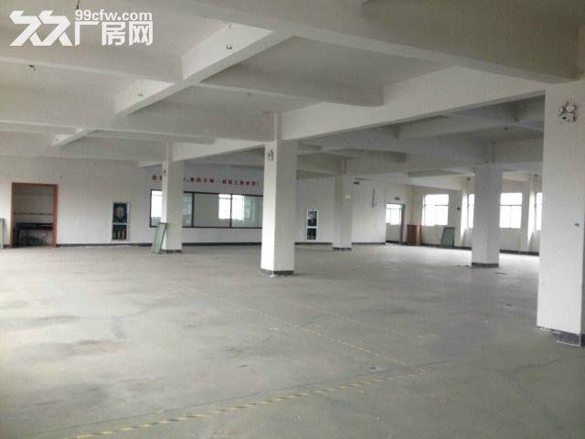 湖熟工业园.二楼500平米−−−−1800平米仓库,厂房出租。有货梯.-图(6)