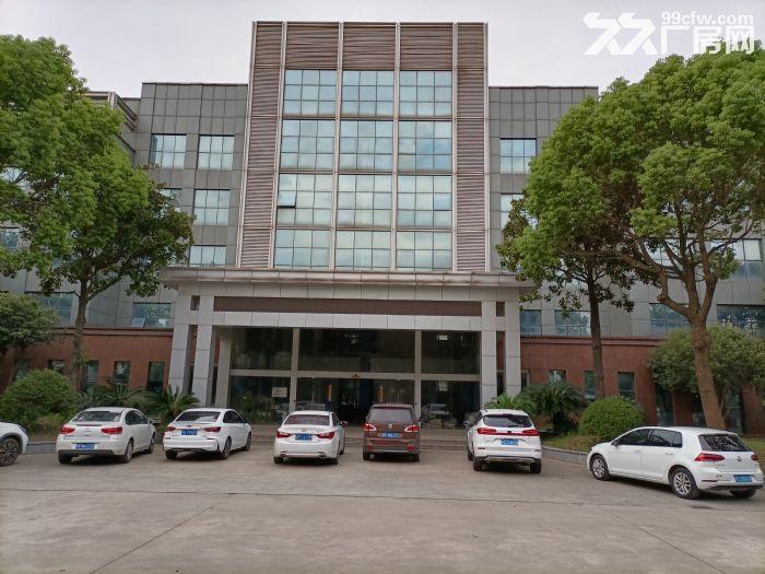 宝山罗泾,36000平独院厂房,适合:智能制造、创意园区、汽车产业园等,可环评-图(1)