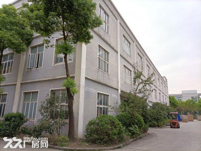 宝山罗泾,36000平独院厂房,适合:智能制造、创意园区、汽车产业园等,可环评-图(3)