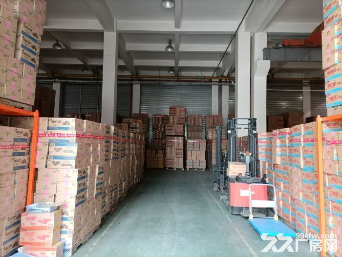 宝山罗泾,36000平独院厂房,适合:智能制造、创意园区、汽车产业园等,可环评-图(5)